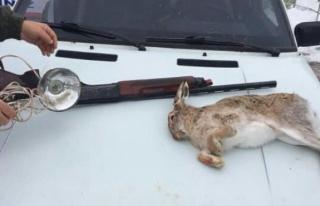 Kaçak tavşan avlayanların aracına el konuldu!