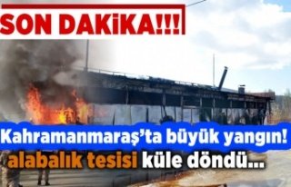 Kahramanmaraş'ta büyük yangın tesis kullanılamaz...