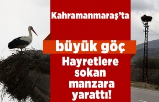 Kahramanmaraş'ta hayretlere düşüren göç...