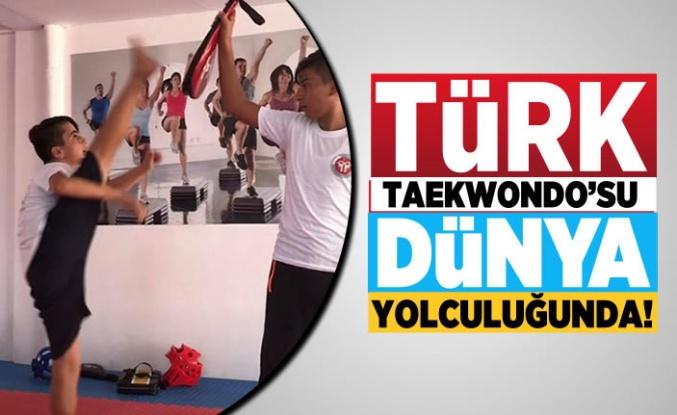 Kahramanmaraşlı Taekwondo'cular Türkiye'yi temsil edecek